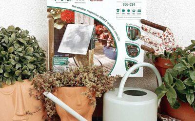Creating an Eco-friendly Garden Environment