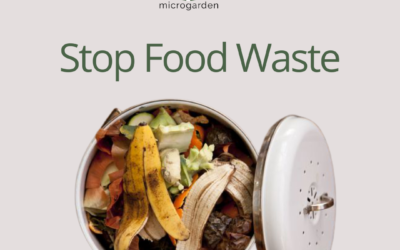 Effective ways to minimize your food wastage in your own home